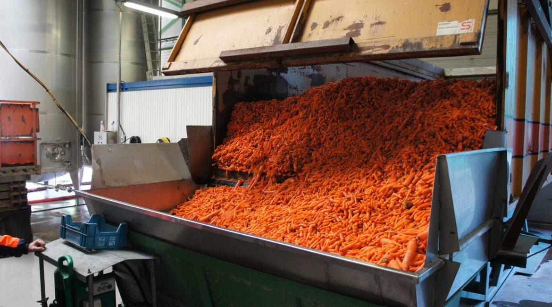 Festival ALIMENTERRE : débat entre le réalisateur de Food Savers et Carrefour