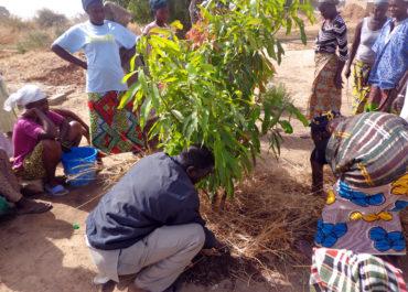 Au Sénégal : accompagner une difficile reconversion vers l'agriculture