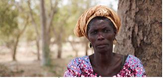 En Guinée-Bissau : les femmes développent le sel durable dans les mangroves !