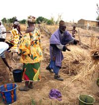 """L'appel à projets """"Promotion de l'agriculture familiale en Afrique de l'Ouest"""" est lancé !"""
