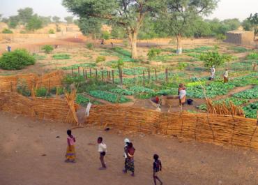 Au Mali : les projets continuent