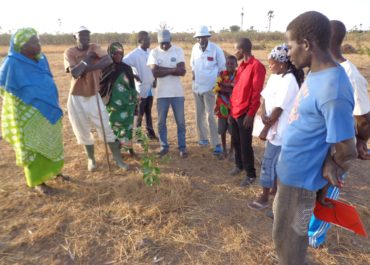 Au Sénégal : les agriculteurs de Mbour font face au réchauffement climatique