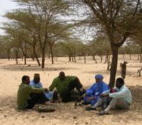 Mauritanie : paysans et élus locaux dessinent l'agriculture de demain
