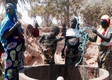 Au Niger : l'agriculture familiale