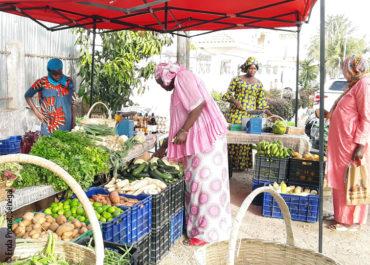 Témoignage : Covid-19 et risques sur la sécurité alimentaire en Afrique de l'Ouest