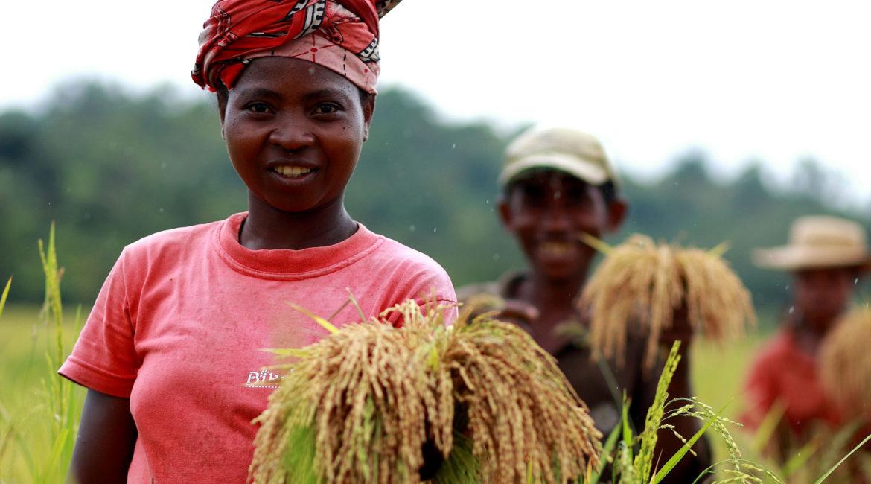 Agriculture familiale : le défi
