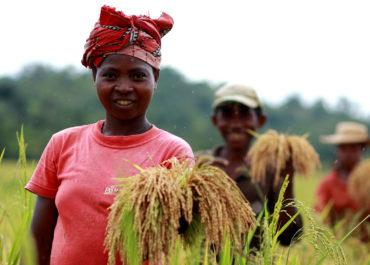 16 octobre 2021 – journée mondiale de l'alimentation, agir pour l'avenir