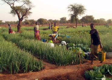 Solidarité avec le Burkina Faso