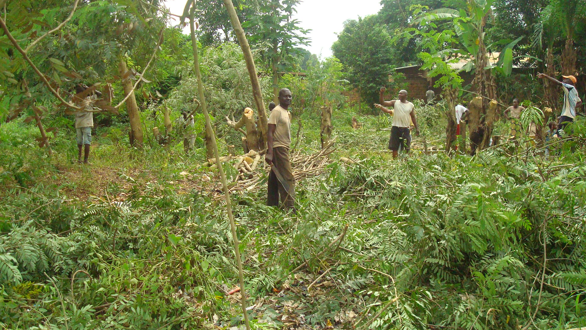 assainissement du milieu environnemental, Nkayi 2021 pcpacongo