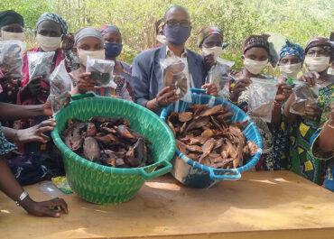 Une pêche durable pour nourrir les populations au Mali